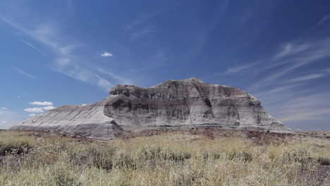 Arizona-Petrified-Forest-mesa-and-dry-grass