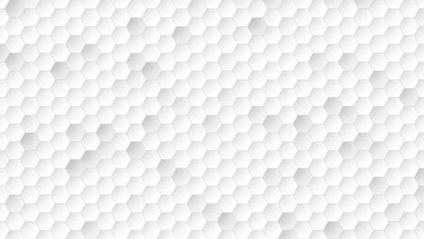 Hexágono-De-Movimiento-Con-Fondo-Abstracto-1