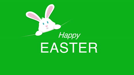 Happy-Easter-text-and-rabbit-on-green-background-5