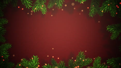 Animated-closeup-abstract-bokeh-and-Christmas-green-tree-branches