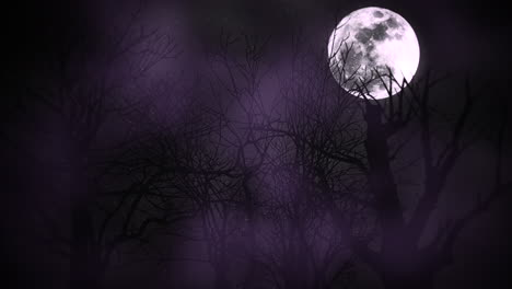 Mystical-animation-halloween-background-with-dark-moon-and-clouds-3