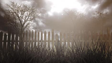 Fondo-Místico-De-Halloween-Con-Bosque-Oscuro-Y-Niebla-4