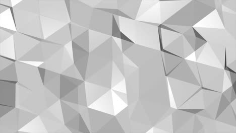 Motion-dark-white-low-poly-abstract-background-3