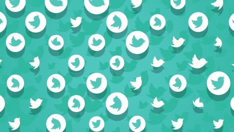 Motion-icons-of-Twitter-social-network-on-simple-background-2