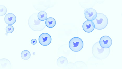 Motion-icons-of-Twitter-social-network-on-simple-background-3