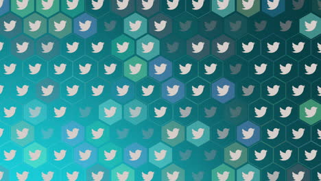Motion-icons-of-Twitter-social-network-on-simple-background-5