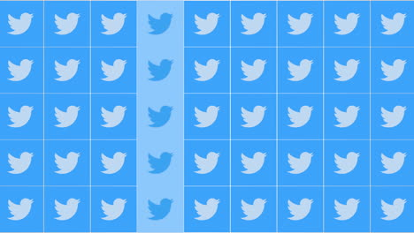 Motion-icons-of-Twitter-social-network-on-simple-background-7