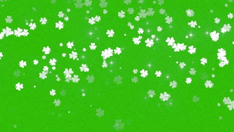 Motion-green-shamrocks-with-Saint-Patrick-Day-1