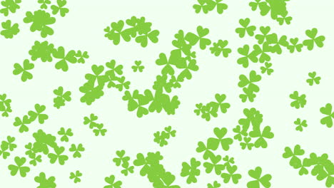 Motion-green-shamrocks-with-Saint-Patrick-Day-7