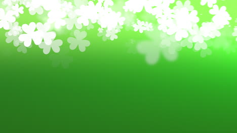 Motion-green-shamrocks-with-Saint-Patrick-Day-11