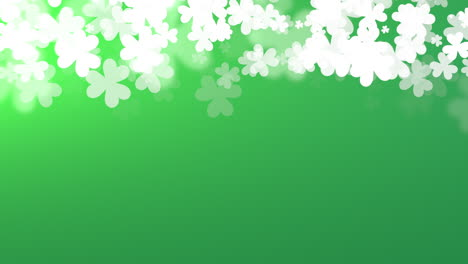 Animation-Saint-Patricks-Day-with-motion-white-shamrocks-3