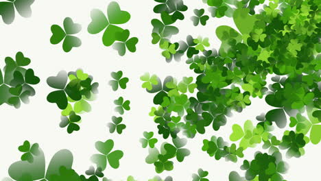 Motion-green-shamrocks-with-Saint-Patrick-Day-13