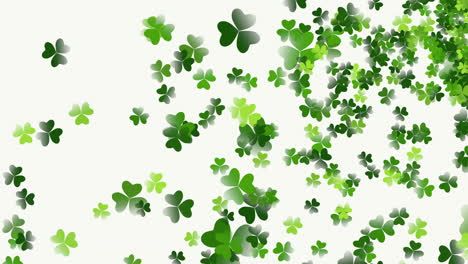 Animation-Saint-Patricks-Day-with-motion-green-shamrocks-7