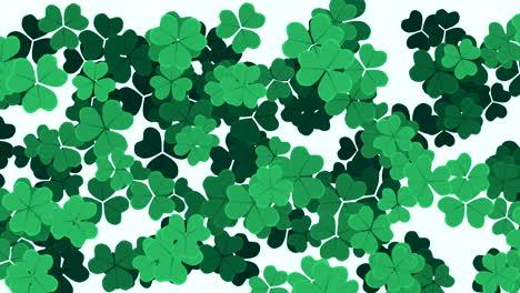 Animation-Saint-Patricks-Day-with-motion-green-shamrocks-10