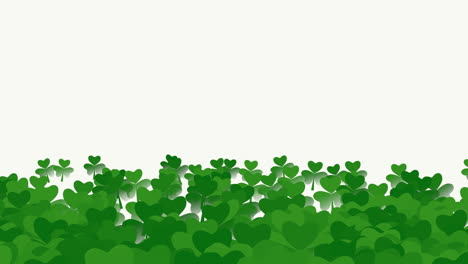 Motion-green-shamrocks-with-Saint-Patrick-Day-31