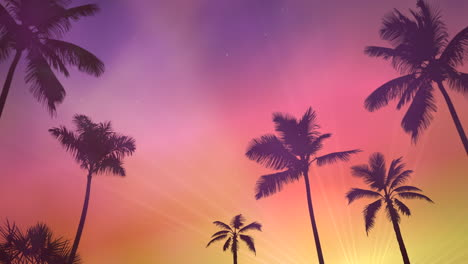 Panoramic-view-of-tropical-landscape-with-palm-trees-and-sunset