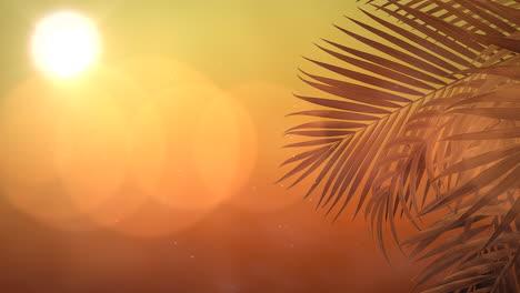 Vista-Panorámica-Del-Paisaje-Tropical-Con-Palmeras-Y-Puesta-De-Sol-6