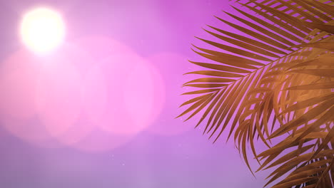 Panoramic-view-of-tropical-landscape-with-palm-trees-and-sunset-9