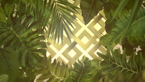 Closeup-tropical-flowers-and-leaf-with-summer-background-7