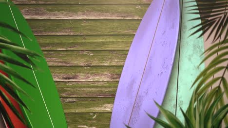 Closeup-surfing-boards-and-tropical-leaves-with-summer-background-2