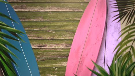 Closeup-surfing-boards-and-tropical-leaves-with-summer-background-3