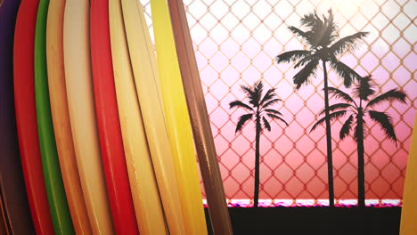 Closeup-surfing-boards-and-tropical-leaves-with-summer-background-5