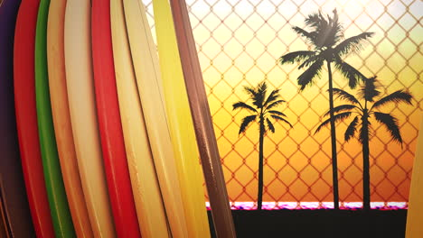 Closeup-surfing-boards-and-tropical-leaves-with-summer-background-6