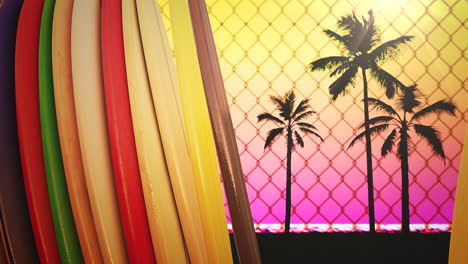 Closeup-surfing-boards-and-tropical-leaves-with-summer-background-8