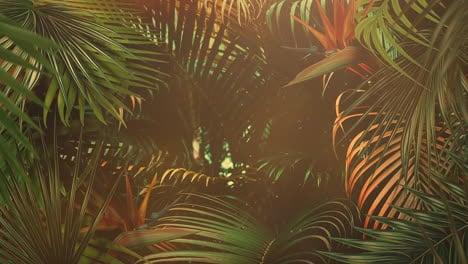 Closeup-tropical-leaf-of-trees-with-summer-background-13
