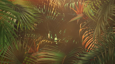 Closeup-tropical-leaf-of-trees-with-summer-background-14