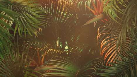 Closeup-tropical-leaf-of-trees-with-summer-background-15