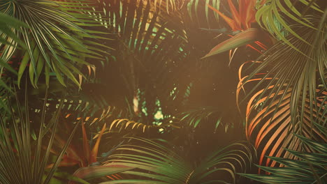 Closeup-tropical-leaf-of-trees-with-summer-background-16