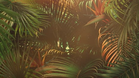 Closeup-tropical-leaf-of-trees-with-summer-background-17