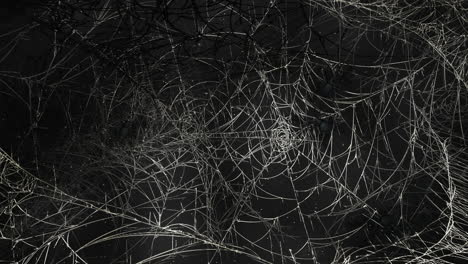Mystical-horror-background-with-dark-spiderweb-and-motion-camera