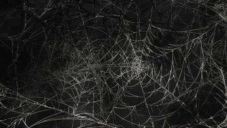 Mystical-horror-background-with-dark-spiderweb-and-motion-camera-1