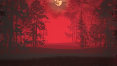 Fondo-Místico-De-Halloween-Con-Bosque-Oscuro-Y-Niebla-6