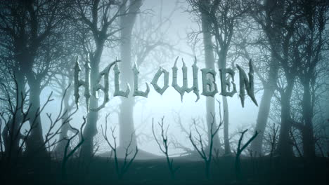 Halloween-and-mystical-background-with-dark-forest-and-fog