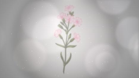 Primer-Plano-Flores-Con-Movimiento-Boda-Plano-De-Fondo-6