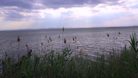 El-Hermoso-Lago-De-La-Albufera-España