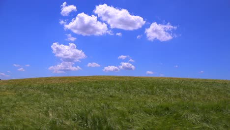 Clouds-drift-behind-beautiful-vast-open-fields-of-waving-grain-1