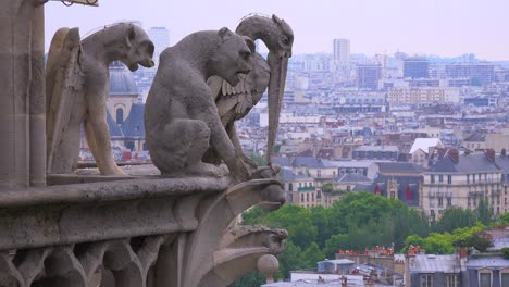 Gargoyles-watch-over-Paris-France-from-Notre-Dame-cathedral-3