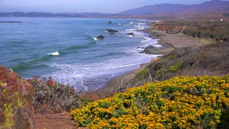 Hermosa-Playa-Y-Paisaje-Costero-A-Lo-Largo-De-La-Autopista-Uno-De-California