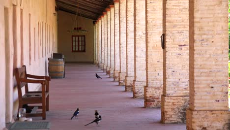 Old-adobe-pillars-and-columns-line-a-California-Mission