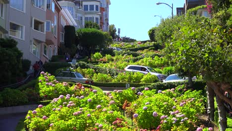 Cars-drive-down-Lombard-Street-in-San-Francisco-America-s-windiest-street-1