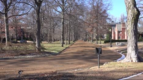 Calles-Arboladas-Definen-Un-Vecindario-Rico-En-St-Louis-Missouri