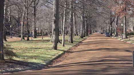 Treelined-streets-define-a-wealthy-neighborhood-in-St-Louis-Missouri-1