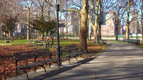 Autumn-leaves-blanket-a-lonely-park-in-New-York-City-with-park-benches-all-around-1