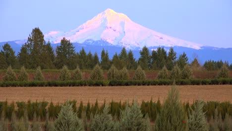 La-Luz-Del-Atardecer-Ilumina-Mt-Hood-Oregon-1