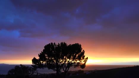 Ein-Wunderschöner-Sonnenaufgang-Oder-Sonnenuntergang-Entlang-Der-Kalifornischen-Küste-Mit-Einem-Silhouettenbaum-Im-Vordergrund