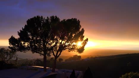 Un-Hermoso-Amanecer-O-Atardecer-A-Lo-Largo-De-La-Costa-De-California-Con-Una-Silueta-De-árbol-En-Primer-Plano-1